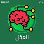 العقل البشري والعقل الإلكتروني